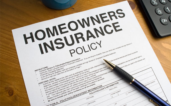 Have You Ever Read Your Insurance Policy?